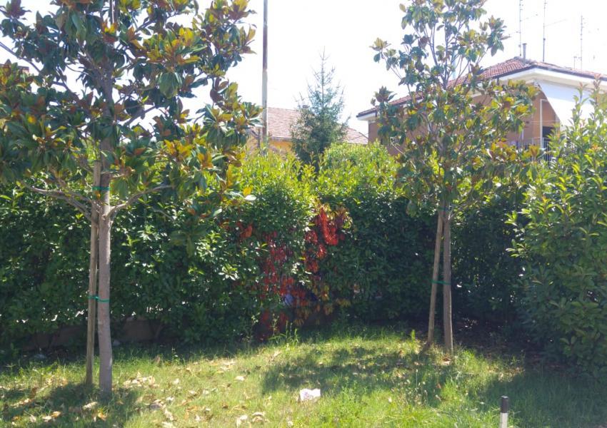 Pesaro, zona Muraglia - Casa Schiera / Porz.Casa in Vendita   Foto 5